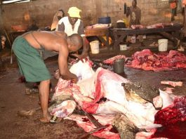Oyo govt warn butchers