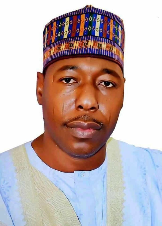 Borno state Governor,Zulum