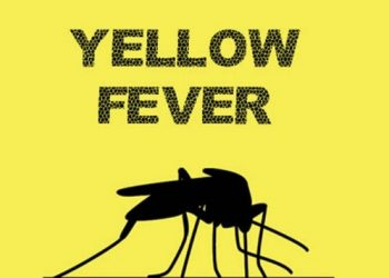 Yellow Fever Claims 8 Lives in Bauchi